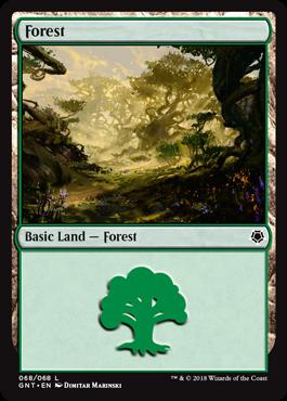 Basic Forest